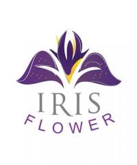 Iris Flower Lebanon